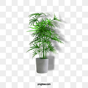 Flower Pot Png Images Vectors And Psd Files Free