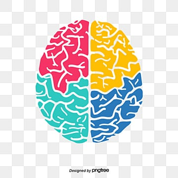 vector color brain color cartoon brain brain creative brain png and vector