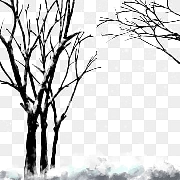 Tree Branch Png Images Vectors And Psd Files Free