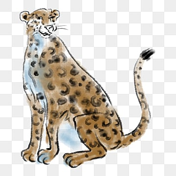 leopard, Leopard Clipart, Wild Leopard, Animal PNG and PSD