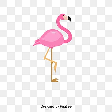 flamingo png  vectors  psd  and clipart for free download flamingo clip art free flamingo clip art free