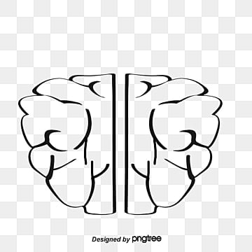 Blue brain png images vectors and psd files free download on pngtree vector blue brain and business blue brain brain cartoon brain png and vector ccuart Image collections