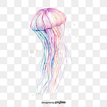Jellyfish Png, Vectors, PSD, and Clipart for Free Download | Pngtree