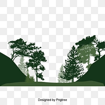 Pine Tree on design of pine trees