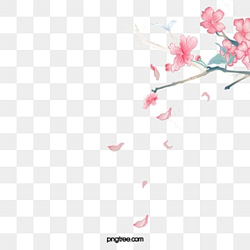 Flowers with petals falling on, Petal, Squid, Falling PNG Image