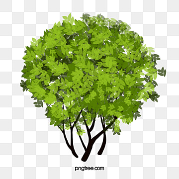 Bushes Png, Vector, PSD, and Clipart With Transparent