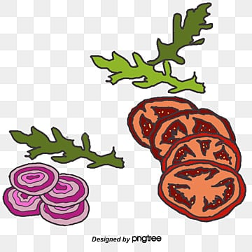 tomato slices png images vectors and psd files free download on