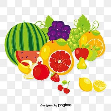 Desenhos De Frutas Png Vetores Psd E Clipart Para Download