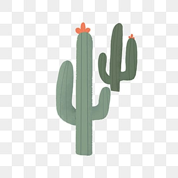 Cactus Png Images Vectors And Psd Files Free Download