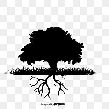 Tree Roots Png Images Vector And Psd Files Free