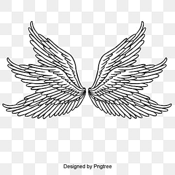 Wing Png, Vectors, PSD... Skull And Flower Designs