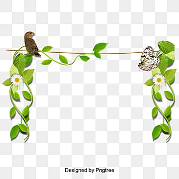 Green Vine Png Images Vectors And Psd Files Free