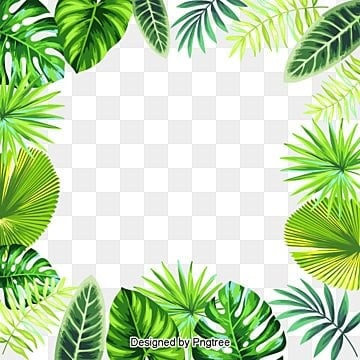 Spring Green Leaves And Grass, Leaves, Branches, Spring PNG