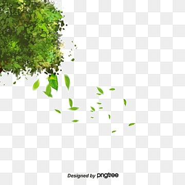 Trees, Green, Trees, Leaves PNG and PSD