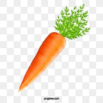 Zanahoria Png Vectores Psd E Clipart Para Descarga Gratuita Pngtree Zanahoria svg,zanahoria clipart,vector de zanahoria,zanahorias svg,bunny svg,happy easter svg,vegetarian svg,vegetable svg svg. zanahoria png vectores psd e clipart