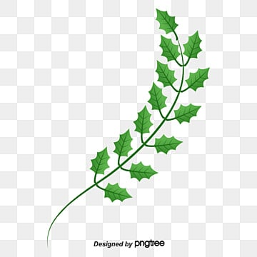 olive branch png  vectors  psd  and clipart for free free dove clipart png free dove clipart christian