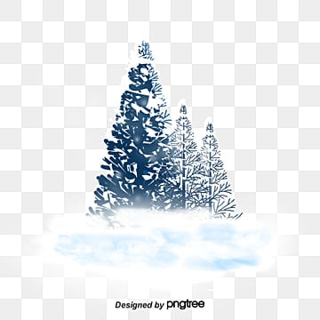 Winter pine, Winter, Snow, White PNG and PSD