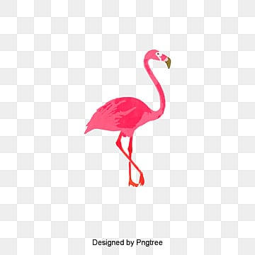 Flamingo Png, Vectors, PSD, and Icons for Free Download ...