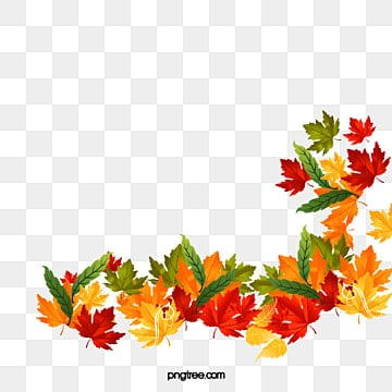 Autumn Leaves on Frame Border Design