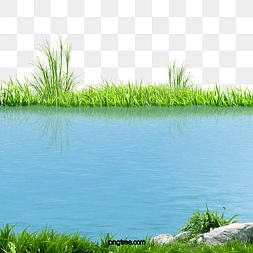 зеленый красивых озер, зеленый озер, озеро, красивые озера PNG и PSD