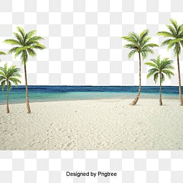 Hawaii beach Free PNG and PSD