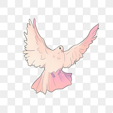 flying the pigeons  fly  pigeon  birds png image and free clipart dove of peace free dove clipart black and white