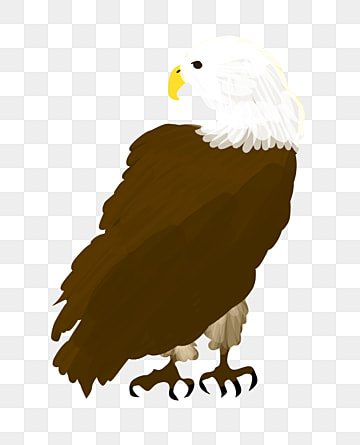 Eagle Clipart Png Images Vector And Psd Files Free Download On Pngtree