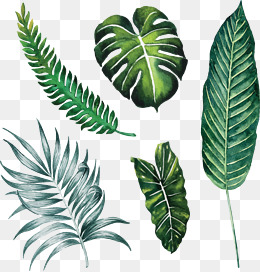 Hand-painted large leaves