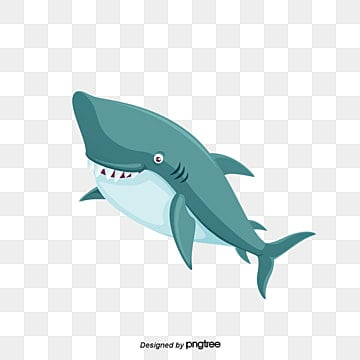 Shark Png Vectors Psd And Clipart For Free Download Pngtree