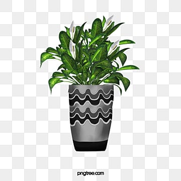 Indoor Plants Png Images Vector And Psd Files Free