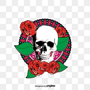 cool skull color skull skeleton material skull photos png image