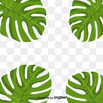 Banana Leaves Decorative Border Green Plant Around PNG And PSD