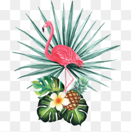 Watercolor flamingos, Watercolor, Flamingos, Decoration PNG Image