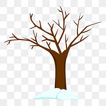 Dry Tree PNG Images | Vector and PSD Files | Free Download ...