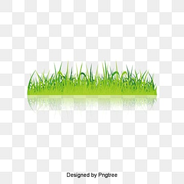 Green Grass Png Vectors Psd And Clipart For Free