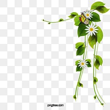 Flores Y Enredaderas Png Vectores Psd E Clipart Para Descarga