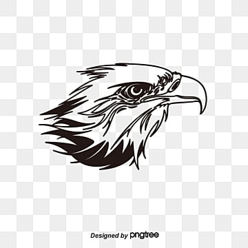 White Eagle Png, Vector, PSD, and Clipart With Transparent