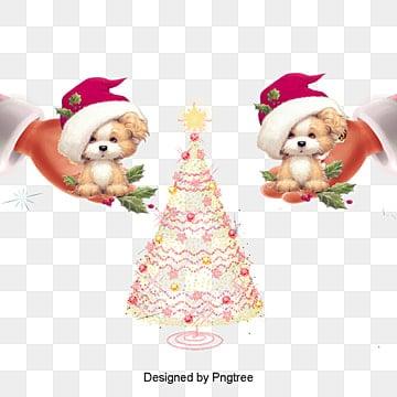 الجرو مع عيد الميلاد القبعات, عيد الميلاد, هالوين, الكلب مع قبعة PNG و PSD