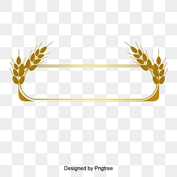 Gold Line border, Gold Dendrite, Gold Frame, Line Border PNG and Vector