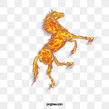 الحصان الناري الحرة إبزيم المواد الزخرفية, Ritmeester, جميل, النار المشتعلة PNG و PSD