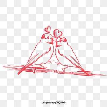 Love Birds PNG Images | Vector and PSD Files | Free Download on Pngtree