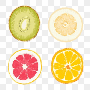 orange slice png vectors psd and clipart for free download pngtree