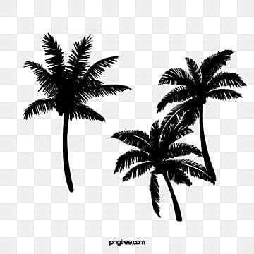 coconut palm tree silhouette vector