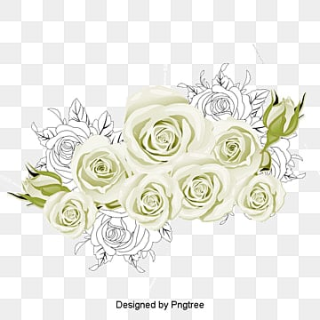 White roses, Vector Rose Sea, Vector Material Roses Sea, Sea Rose Creative PNG and Vector