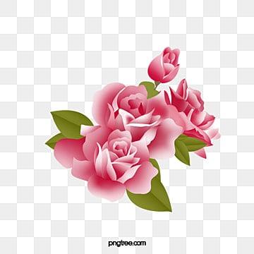 desenho de rosas vermelhas png images vetores e arquivos psd