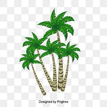 Material de vetor de árvore de coco Verde, Vetor De árvore De Coco, Planta Verde, A árvore De CocoPNG e Vector