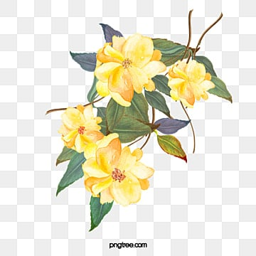 Yellow flowers png vectors psd and clipart for free download yellow flowers mightylinksfo