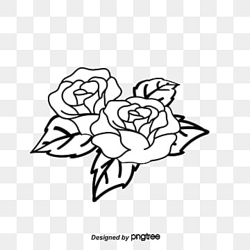 Rose Lines Png Vectors Psd And Clipart For Free Download Pngtree