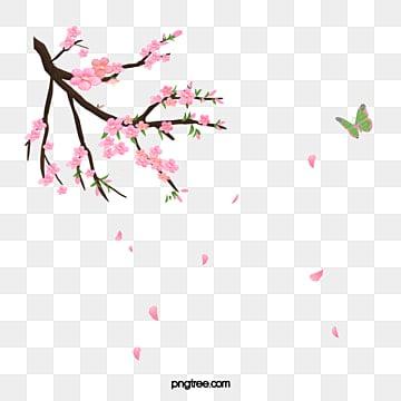 Ramo de cerejeira, A Borboleta, Decoração, As árvoresPNG e Vector