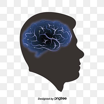 brain vector, Avatar, Character, Brain PNG and Vector